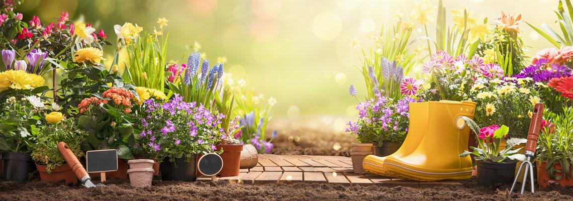 Entreprise de jardin